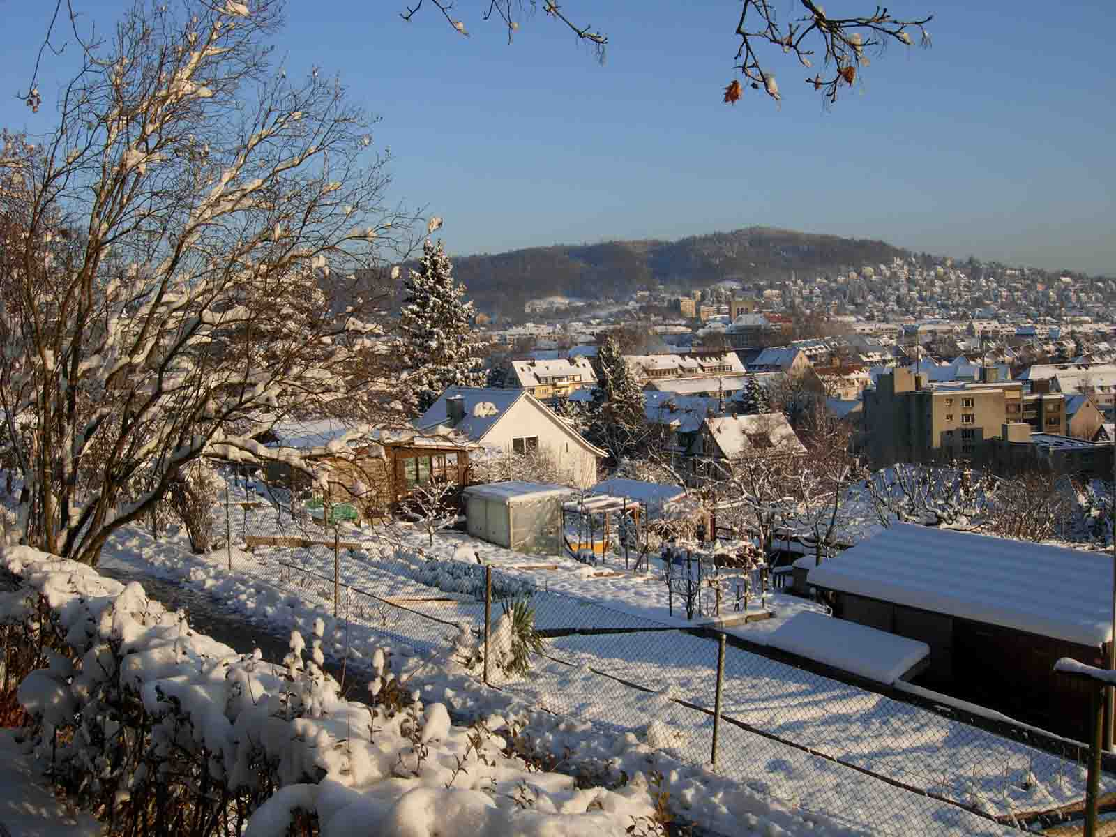 Schnee in Wipkingen – alljährlich eine Freude. Eine Einladung zum «lädele», spazieren und flanieren.