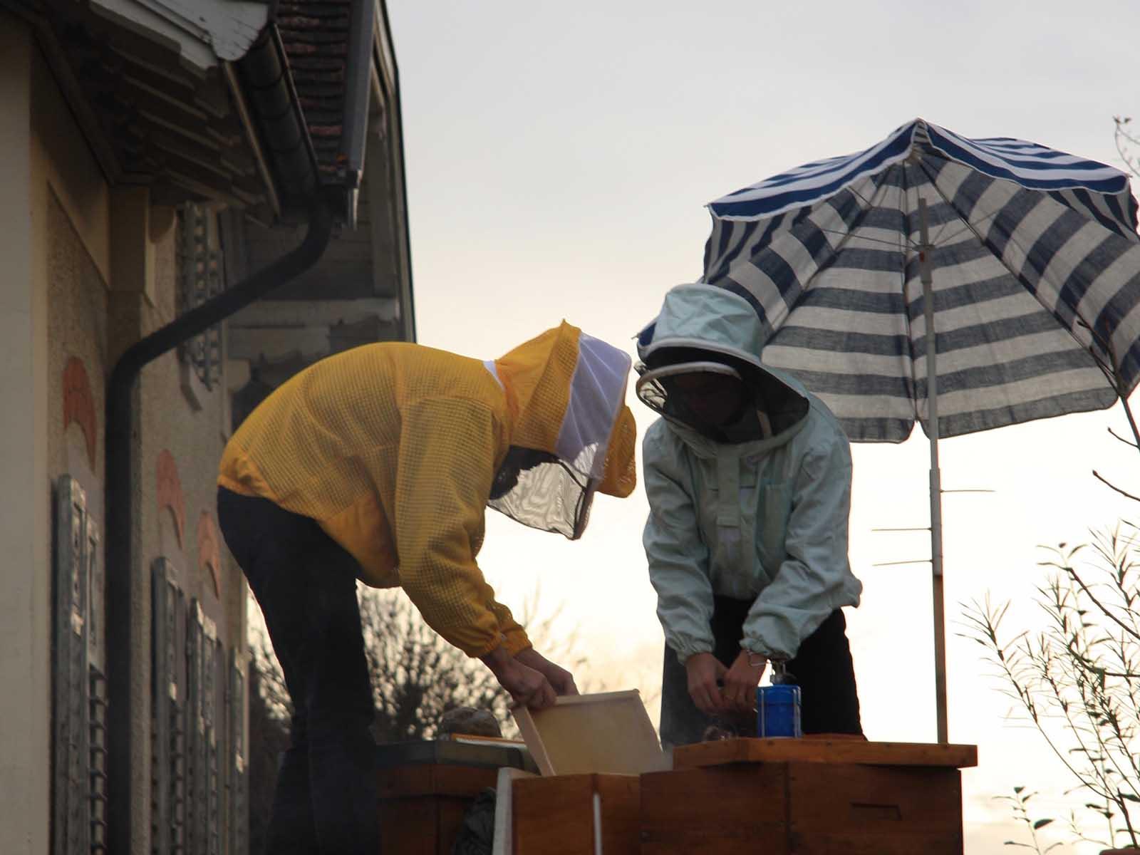Imker*innen auf dem Dach des Würfels bei der letzten Kontrolle der Bienenstöcke vor dem Winter.