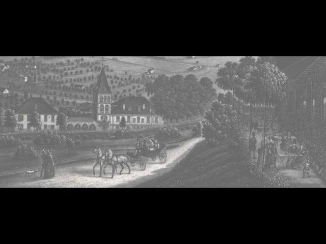 Ausschnitt aus dem berühmten Stich von Heinrich Siegfried «Vue générale de Zurich» mit Wunderligut und Restaurant Waid